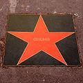 Star of Chicago.jpg