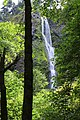 Starvation Creek Falls, Waterfalls, Oregon (32332948330).jpg