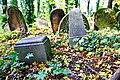 Stary cmentarz żydowski w Cieszynie13.JPG