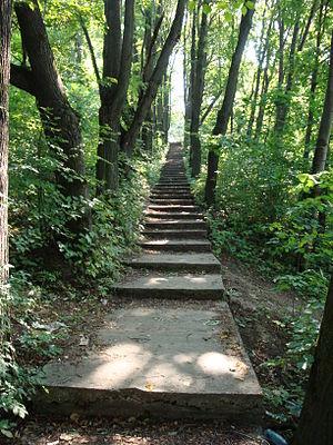 Steps Podolsk