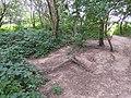 Stokes Field Woods.jpg
