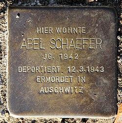 Photo of Abel Bernhard Schaefer brass plaque