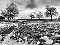 Stone Fence With Snow (31440137932).jpg
