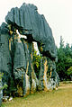 Stone forest 1983-11.jpg