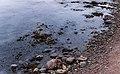 Stones at Barkedal beach 2.jpg