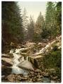 Stony Brook, Wernigerode, Hartz, Germany-LCCN2002713845.tif
