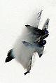 Su-30MKM (3861076715).jpg