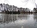 Sulphur Springs Walk (46491316184).jpg