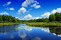 Summer Pond (28639383365).jpg