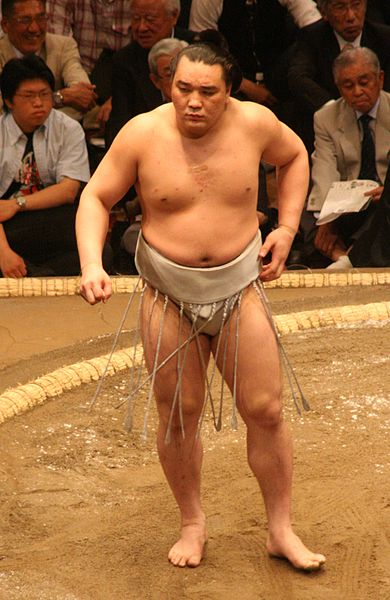 ファイル:Sumo May09 Harumafuji.jpg