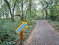 Sutton Spring Wood - Access Road - geograph.jpg