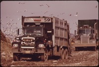 TRUCKS HAUL GARBAGE TO HACKENSACK MEADOWS NEAR FT. LEE ON THE HUDSON RIVER, ATTRACTING FLOCKS OF SCAVENGING SEAGULLS... - NARA - 549753.tif