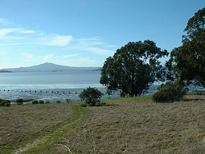 Point Pinole Regional Shoreline - Mount Tamalpais from Point Pinole Regional Shoreline