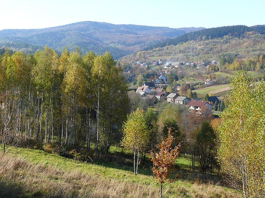 Tarnawa Górna, Lesser Poland Voivodeship