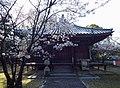 Tenpukuji 20200404 02.jpg