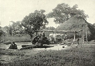 """Sakia - The """"Persian wheel"""", c. 1905"""