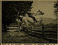 The American annual of photography (1911) (14780126641) (Wallace).jpg