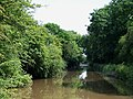 The Coventry Canal, Bedworth, Warwickshire - geograph.org.uk - 1128121.jpg