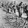 The Disarming of German Troops Crossing the Danish Border Into Germany BU6345.jpg