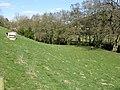 The Goats' Field - geograph.org.uk - 1227055.jpg