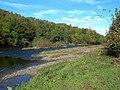 The River Ayr - geograph.org.uk - 579022.jpg