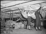 The Royal Navy during the Second World War A14570.jpg