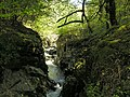 The Ystwyth gorge - geograph.org.uk - 1316742.jpg
