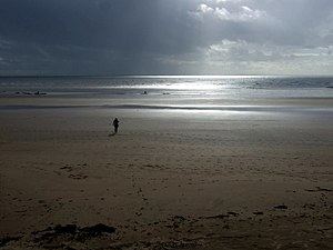 "English: The beach at Swansea ""Light brea..."