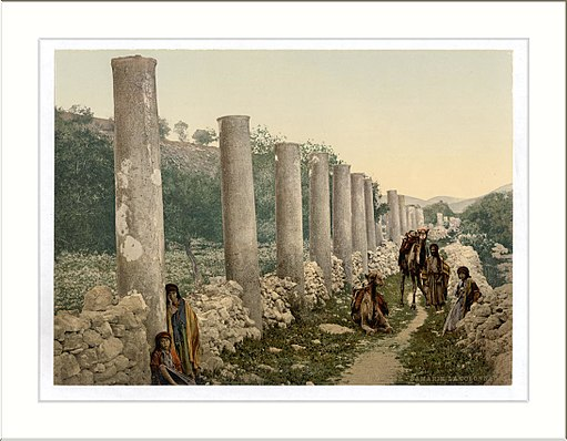 The colonnade Samaria Holy Land