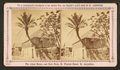 The oldest house, and date palm, St. Francis St., St. Augustine, from Robert N. Dennis collection of stereoscopic views.png