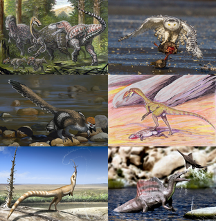 Theropoda Clade of dinosaurs
