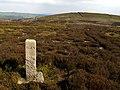 Thornseat Moor - geograph.org.uk - 414083.jpg