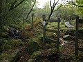 Through the fence, South Tawton Footpath 46 - geograph.org.uk - 996756.jpg