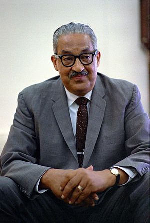 Equal opportunity - African-American civil rights lawyer Thurgood Marshall fought numerous battles in the courts for equal opportunity for all races in the United States. He argued the 1954 Brown v. Board of Education case and won. In 1967 he was appointed to the Supreme Court.