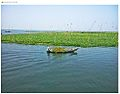 Titas river, homna, comilla, Bangladesh.jpg