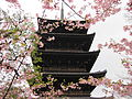 To-ji National Treasure World heritage Kyoto 国宝・世界遺産 東寺 京都166.JPG
