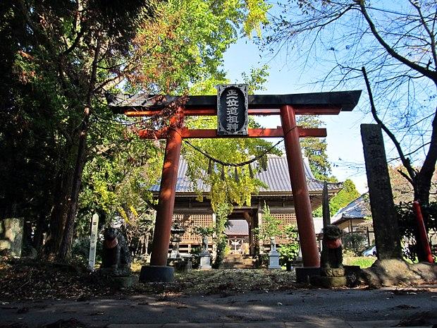 Torii gate of Saeno-jinja shrine.JPG