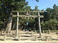Torii of Iki Shrine and Iki Pine Grove.JPG