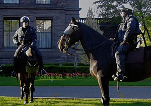 Members of the Toronto Police mounted unit