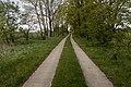 Track, Semlow (LRM 20200517 171315).jpg