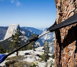 """Hammock camping - Hammock carabiner clipped on """"Tree-Hugger straps"""" or tree webbing."""