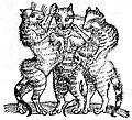 Trois chats 1557.jpg