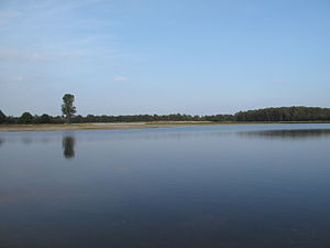 De Maasduinen National Park - A lake in the park