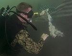 UCT 2 Dives the USS Arizona (Image 1 of 16) 160520-N-GO855-329.jpg