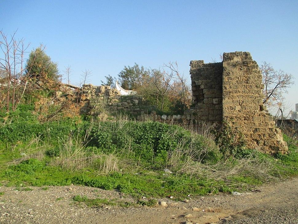 Umm Khalid Castle (1)