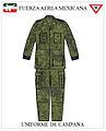 Uniforme de Campaña Campaña Fuerza aérea Mexicana.jpg