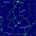 Ursa minor constellation map-fr.png