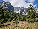 Valle de Pineta - Paisaje 01.jpg