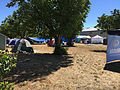 Valley Fire evacuation center in Clearlake - 1.jpg