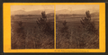 Valley of the Connecticut, Newbury, Vt, by Kilburn Brothers.png